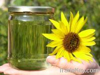 Sell Biodiesel Oil
