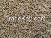 Flax Seeds, Cumin seeds, Cotton Seeds