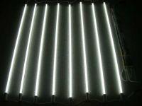 The EEFL (External Electrode Fluorescent Lamp)