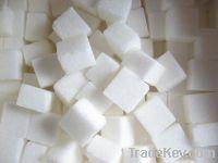 Sell beet sugar icumsa 45