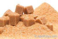 Sell muscovado sugar