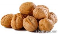 Sell raw organic walnuts and Walnut Kernel with best beauty brands
