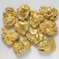 GOLD NUGGET / GOLD DUST