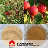 Natural Rose Hips Extract China Wholesale