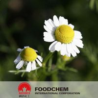 Chamomile Extract 1.2% Apigenin Free Samples
