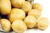 Sell Cheap & High Quality Potato Starch