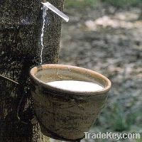 Sell Natural Rubber / Latex Rubber