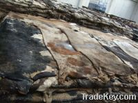 Sell high quality raw dry salted cow hides