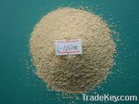 Sell high qulity lysine 98.5% for animal