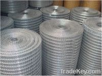 Sell galvanized welded wire mesh