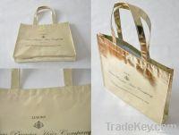 Bag (Non Woven)