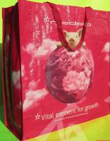 sell reusable pp woven shopping bag