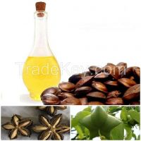 Oil of Inca Nuts (Sacha Inchi)