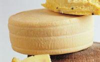 hard cheese (roomy)