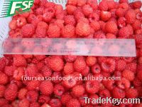 Frozen Strawberry Fruit