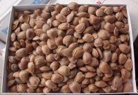 Organic sweet almond