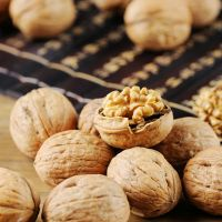 Walnut In High Quality From Xinjiang China Delicious Walnut