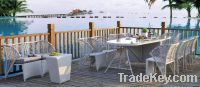 Outdoor Dining set(DT002)