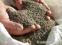 Premium Hemp seeds For Birds