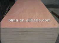 AAA grade UV birch /Okoume/Bintangor plywood for construction