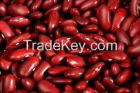 Red kidney beans for export