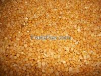Green and yellow lentils for immediate export