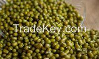 Green mung beans for export