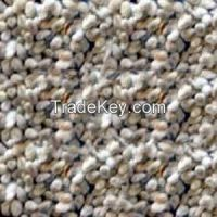 Cotton seed for exportation.