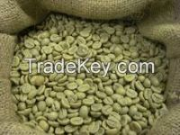 High Quality Robusta Coffee beans