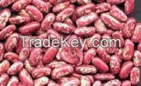 High Quality Red Kidney Beans