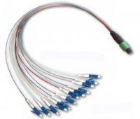 MPO - LC Fiber Optic Patch Cord, 4, 8, 12, 24 Fiber in single connector for optical CATV