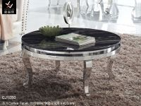 Stainless Steel Coffee Table (CJ1050)