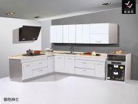 Stainless Steel Kitchen Furniture [JPJ005]