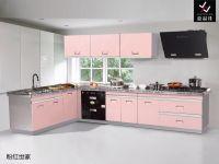 Stainless Steel Kitchen Cabinet [JPJ001]