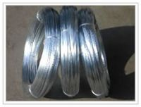 supply low carbon steel / galvanised /barbed/copper wire etc