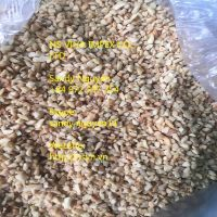 Cashew nut BB2 for Sauce with the best price