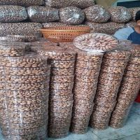 NEW CROP IN VIETNAM SALTED ROASTED CASHEW NUTS