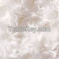 Quality Goose Feather, Pheasant Tail Feather, Duck Feather