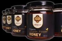 Pure Natural Honey from Vietnam BULK