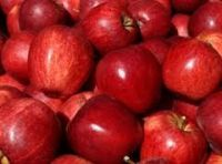 Red Royal Gala Apples
