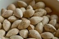 ginkgo nuts for sale
