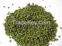 Mung Beans , Red Speckled Sugar , Kidney Beans