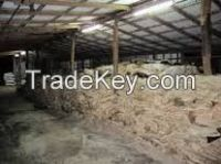 Wet Salted Cow Skin, Cow Heads And Animal Skins, Wet Blue Cow Hides