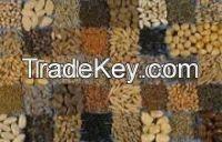 Sell Offer Flax Seeds, Cumin Seeds, Cotton Seeds 50% Discount