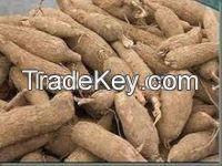 Best Quality Fresh Cassava Root Planter For Export