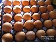 Fresh Chicken Brown & White Table Eggs