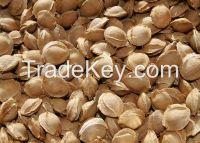 Apricot Kernels, Arabica Coffee Beans, ArtichokeVanilla Beans, Barley