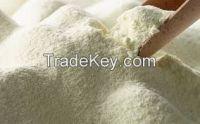 quality milk powders