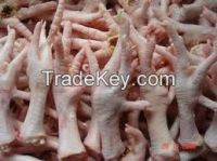 FROZEN CHICKEN AND CHICKEN FEET , PAWS AND BEEF MEAT