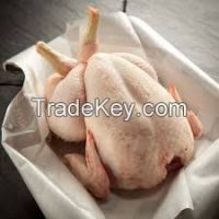 Frozen whole Chicken and Duck, Feet, Paws, Wings and Gizzards